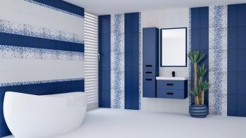 France Bleu 20x50