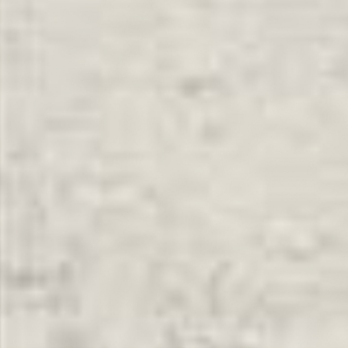 Exil 19,7x19,7 Гранитогрес Exil White 19,7x19,7