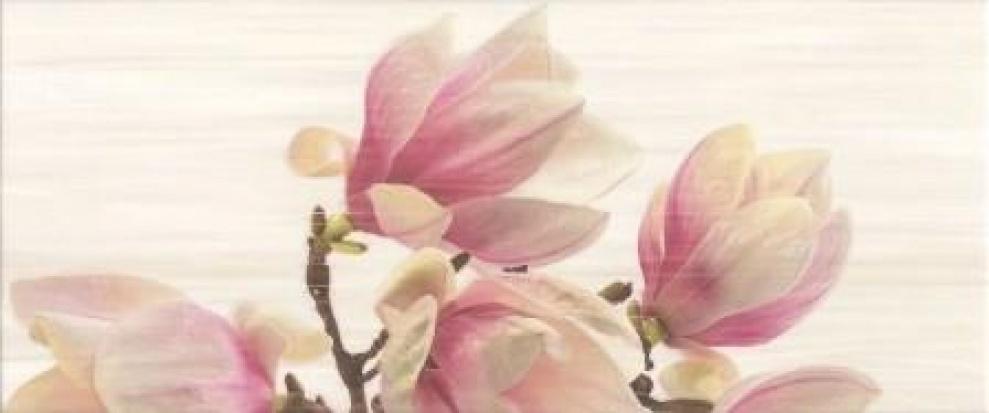 Sensa 25x60 Декор Sensa Magnolia Bis 25x60