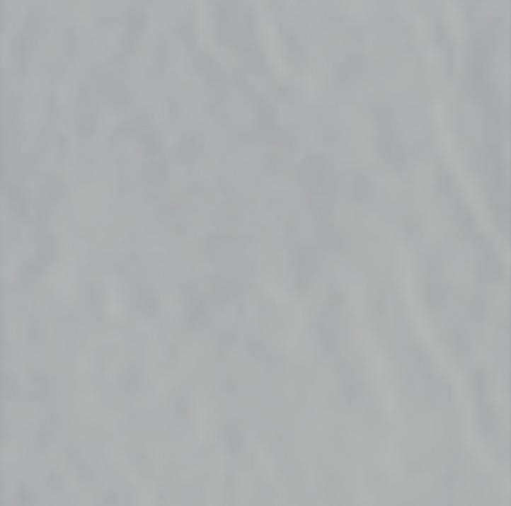 Kivi 19,7x19,7 Гранитогрес Kivi Grey 19,7x19,7
